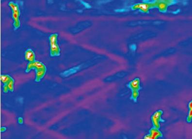 V1100 Thermal image